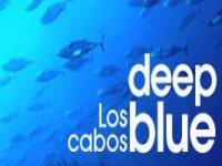 Los Cabos Deep Blue Pesca