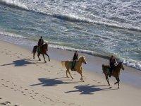 Tour de paseo a caballo