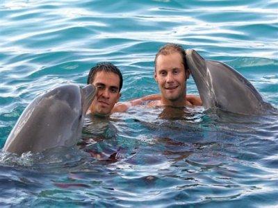 Vámonos Fleet Nado con Delfines
