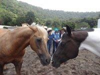 Take advantage of horse riding
