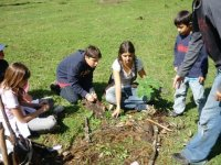ecological workshops