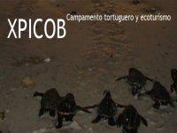 Xpicob Caminata