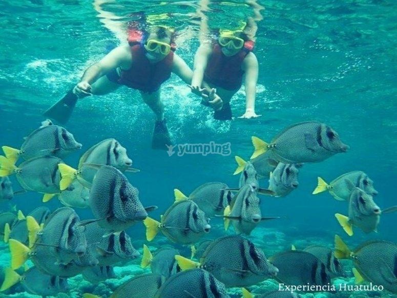 Snorkel en Bahía de Huatulco