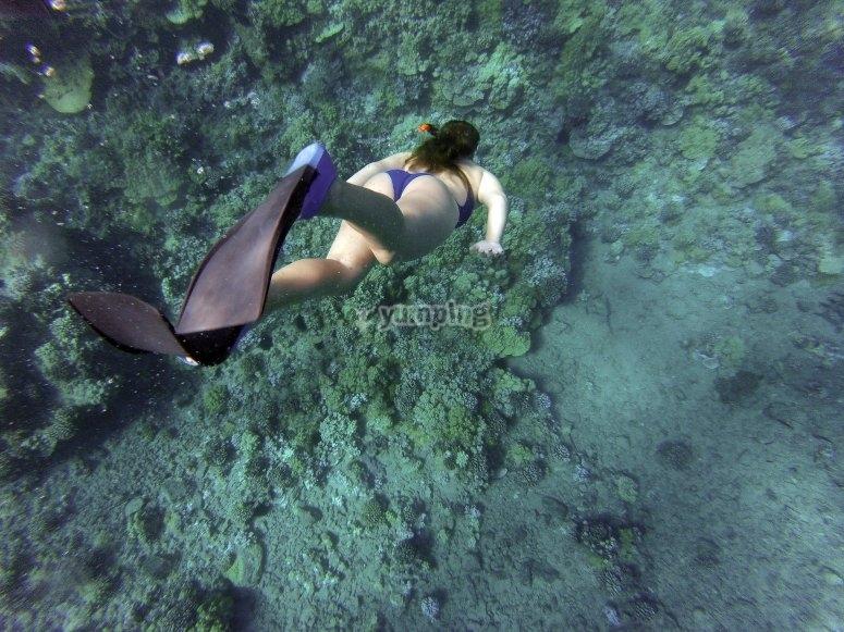 Snorkeling en Huatulco