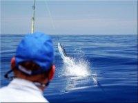 Pesca en el oceano