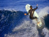 Surf en Mar de Cortes