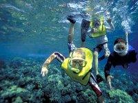 Viaje de snorkel