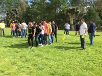 Team building for companies