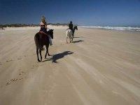 Paseo a caballo en la arena