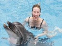 Programa con delfines