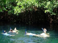 Snorkeling in the jungle