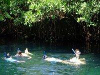 Snorkel en la selva
