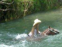 Paseando con los caballos