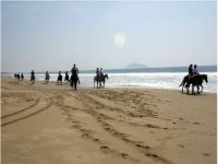 Paseo a caballo por la arena