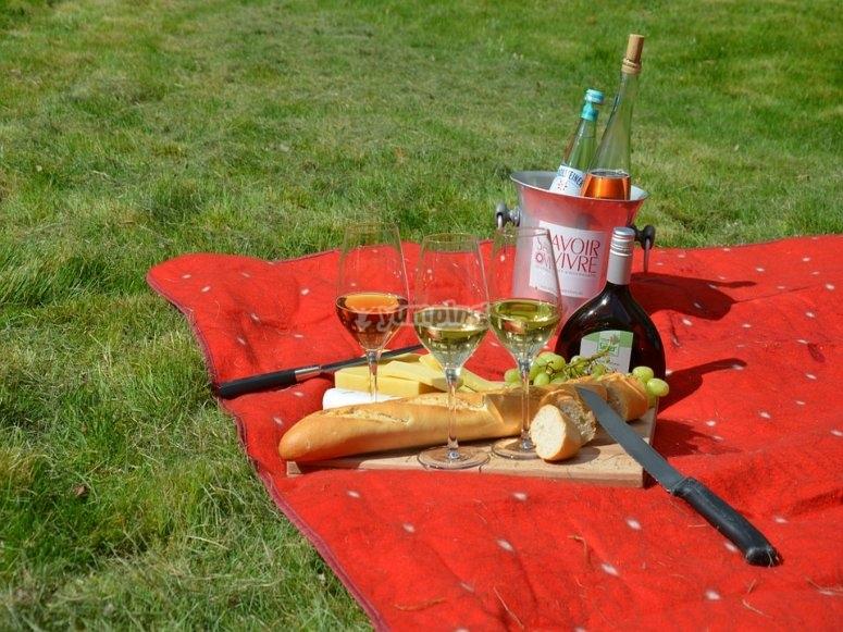 Prepara el picnic