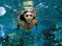 Mundo subacuatico snorkel