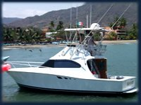Yate Fishing Had