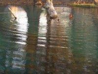 Snorkel en Atlico