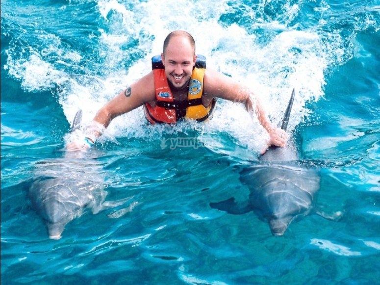 Dorsal swim