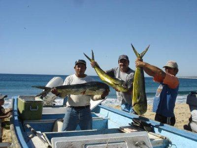 La Sirena Eco Adventures Pesca