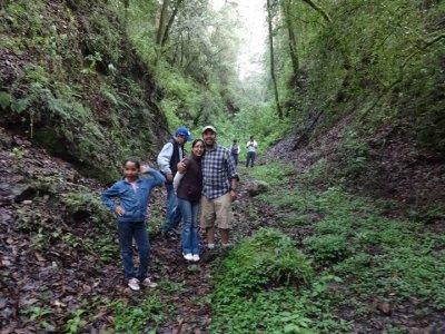 Bosque Esmeralda Caminata