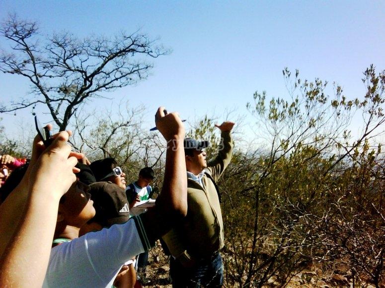 observacion de flora y fauna