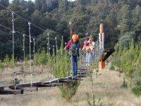 tours suspension bridges