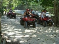 Group tour