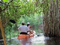 Kayaks on the rivers