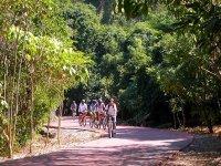 Bike routes through wooded areas