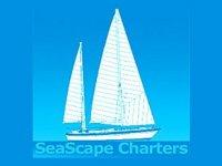 Seascape Charters Pesca