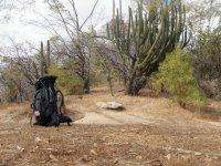 Excursiones en naturaleza