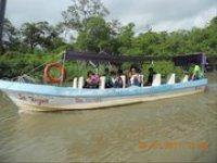 Ride through the Mangroves