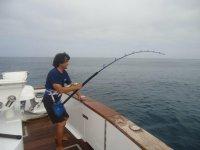 Aparejos de pesca