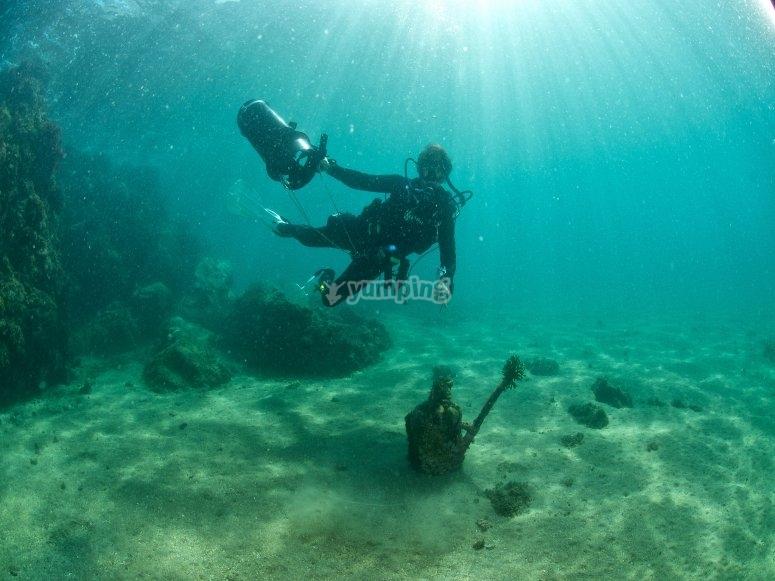 Dive in Merida