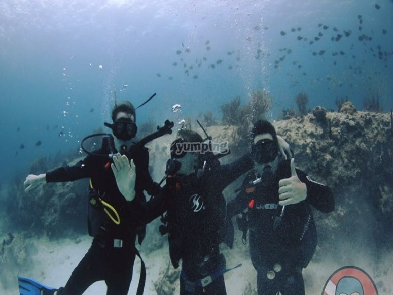 Diving with professionals