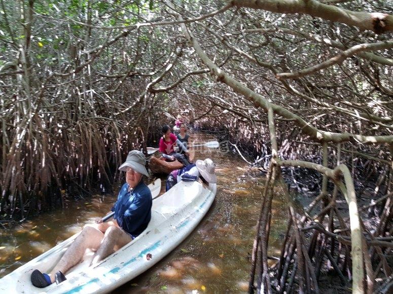 explore yucatan