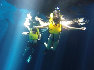 Snorkeling trip in 1 or 2 cenotes