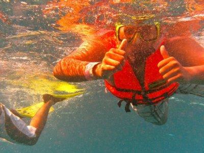 Tour snorkel para ver al Pez Vela en Isla Mujeres