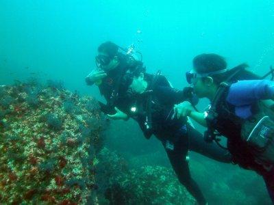Ixtapa Aqua Paradise