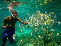 Snorkel y aventura