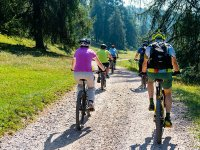 Mountain biking allows you to exercise in a natural environment
