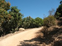 Practicing mountain bike allows you to discover great landscapes