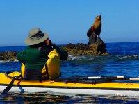 Navegando en tu kayak