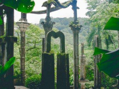 Tour a Jardín Surrealista y Sótano de las Huahuas