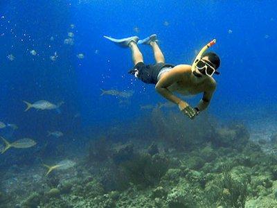 Present Moment Retreat Snorkel