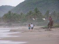 Walking and horseback riding