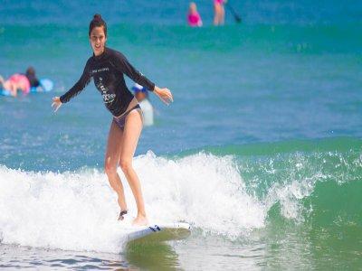Surf N Roll