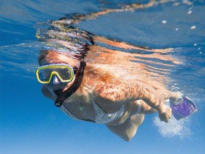 Tour de snorkel en 2 bahías Los Cabos por 3.5 h