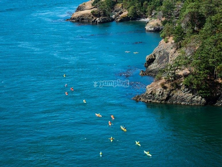 Recorre las orillas de la bahía de los cabos